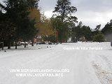 nevadas